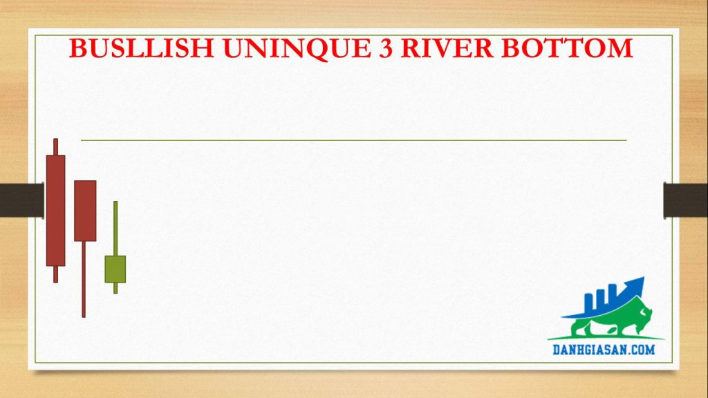 BUSLLISH UNINQUE 3 RIVER BOTTOM