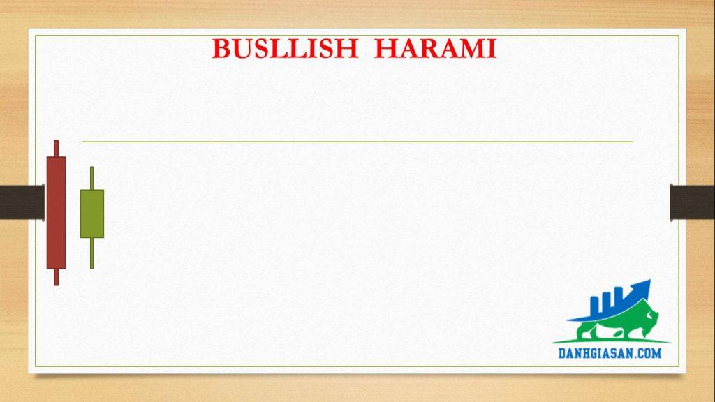 BUSLLISH HARAMI
