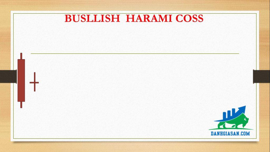 BUSLLISH HARAMI COSS