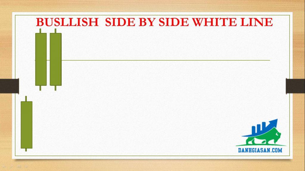 BUSLLISH SIDE BY SIDE WHITE LINE