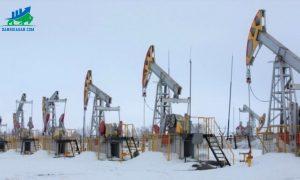 thị trường dầu thô tăng giá sáng 10-8