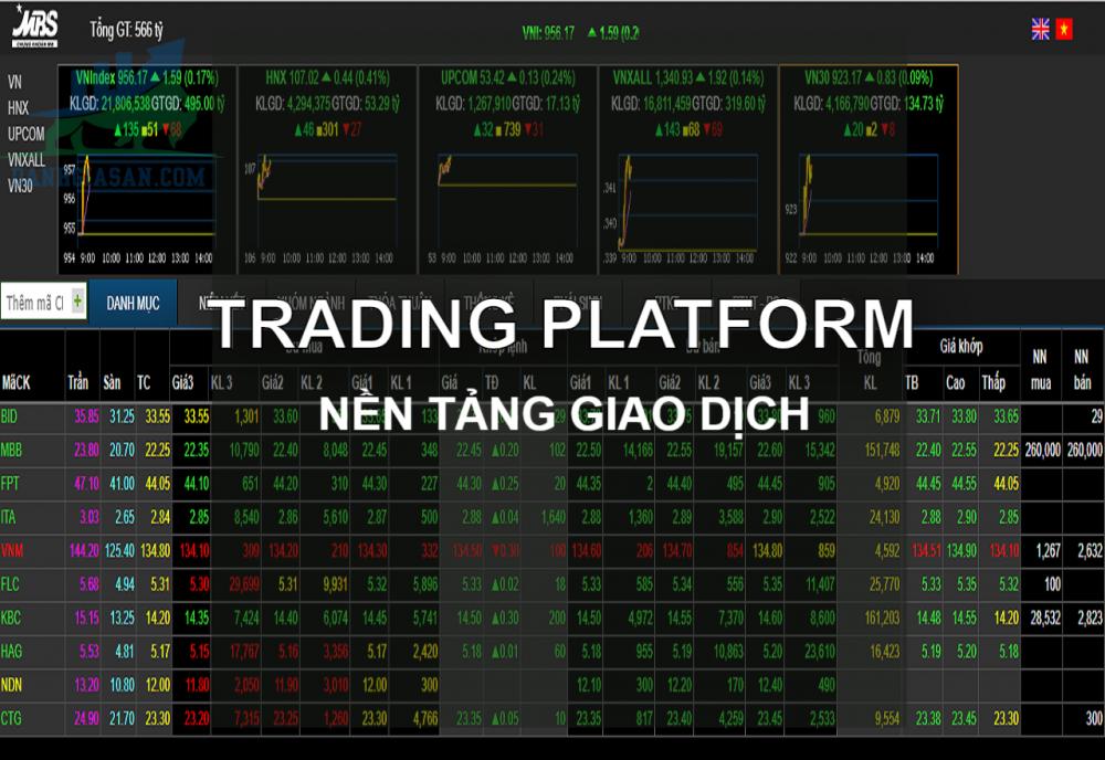 Nền tảng đầu tư cổ phiếu
