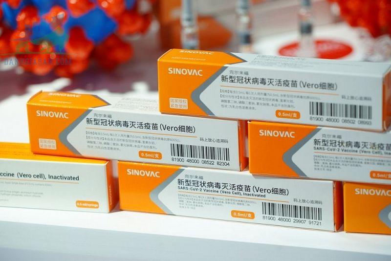 Công ty Sinovac của Trung Quốc bảo vệ vắc-xinCovid-19