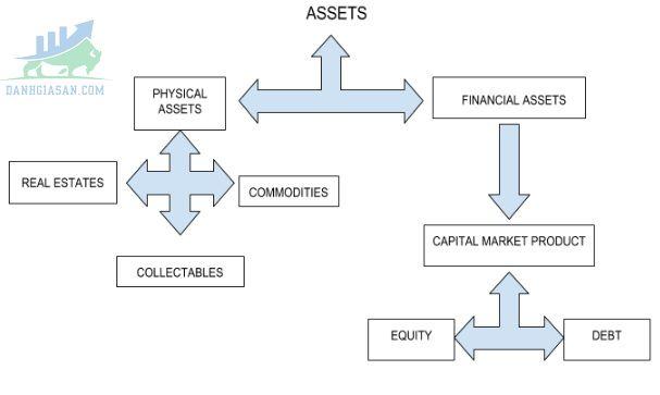 Phân loại tài sản tài chính
