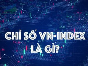 Chỉ số VNINDEX là gì? Tổng quan thị trường chứng khoán Việt Nam