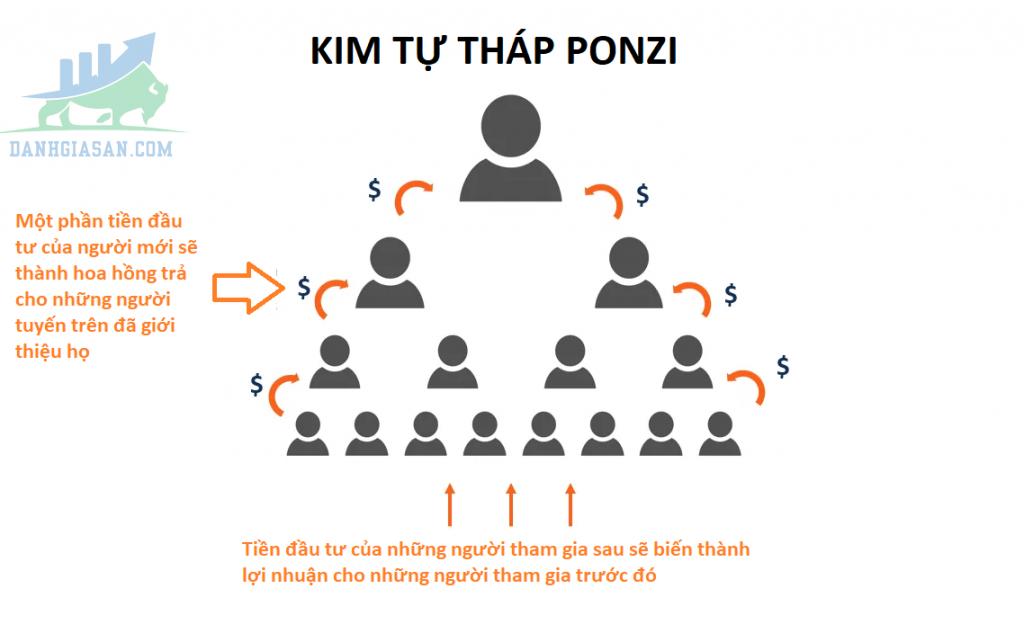 Cách phát hiện mô hình Ponzi