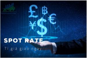 Tỷ giá Spot Rate là gì?