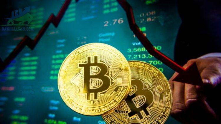 Thị trường Bitcoin giảm mạnh, nhà đầu tư tìm kiếm sự thay thế mới - ngày 19/05/2021