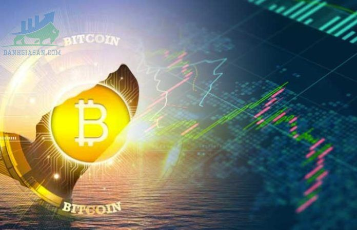 Thị trường tiền điện tử ngày 22/07/2021, Bitcoin tăng mạnh trở lại, Elon Musk xem xét phục hồi thanh toán bitcoin
