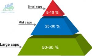 Cổ phiếu Midcap là gì?