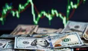 Cách đọc chỉ số USD Index trong thị trường tài chính như thế nào?